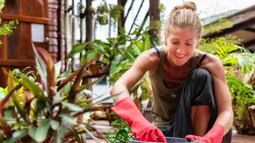 Comment traiter son jardin naturellement avec un purin fait maison
