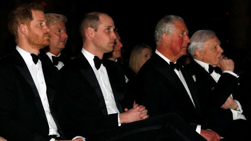 """Le prince Charles, un """"père absent"""" pour William et Harry ? Sa face sombre dévoilée"""