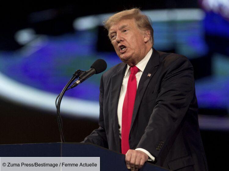 Donald Trump attaque sa nièce Mary en justice : le milliardaire lui réclame 100 millions de dollars