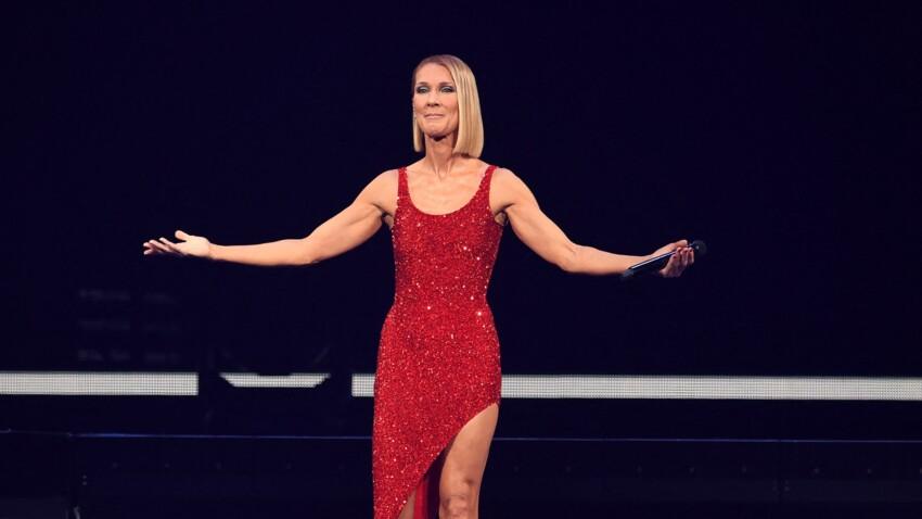 Céline Dion : ce nouveau projet qui va ravir les fans de la chanteuse