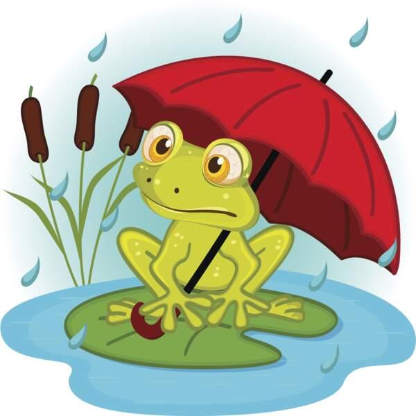 Il pleut, il mouille