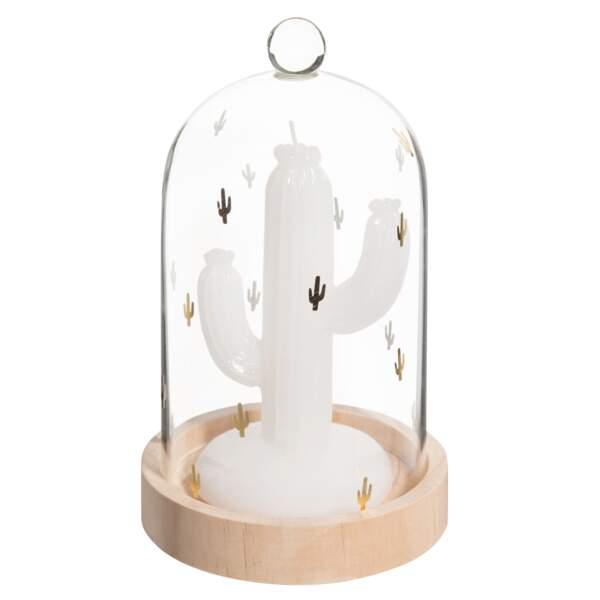 bougie cactus et cloche en verre