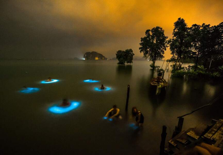 """""""Il y a quelque chose dans l'eau"""", Krabi, Thaïlande"""