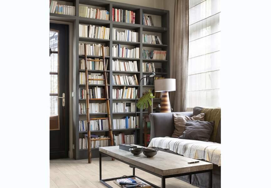 Une bibliothèque intégrée