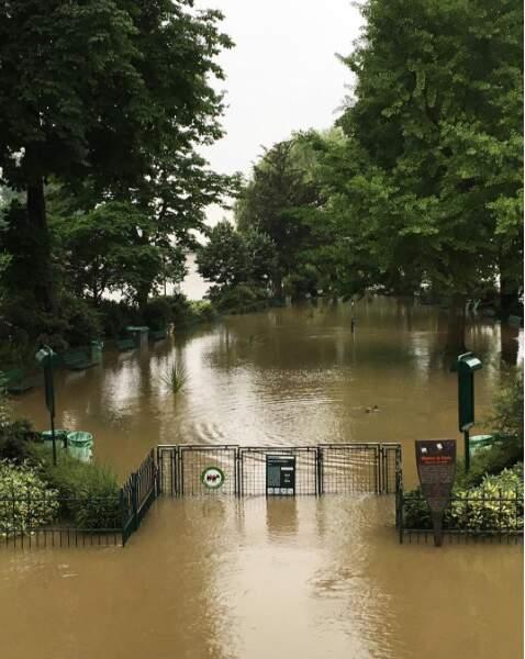 On attendra encore avant de se promener au square du Vert-Galant, sur l'île de la Cité à Paris