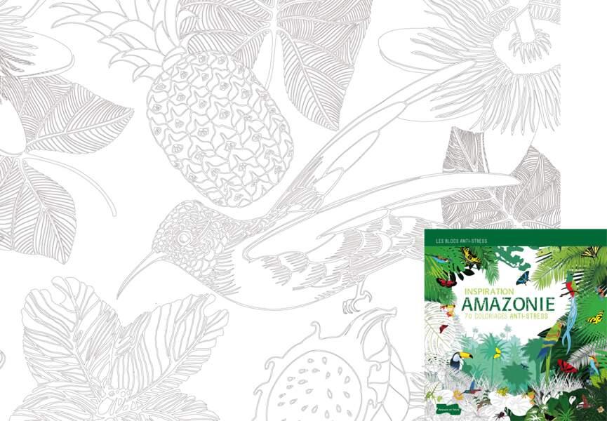 "Coloriage ""Inspiration Amazonie"""