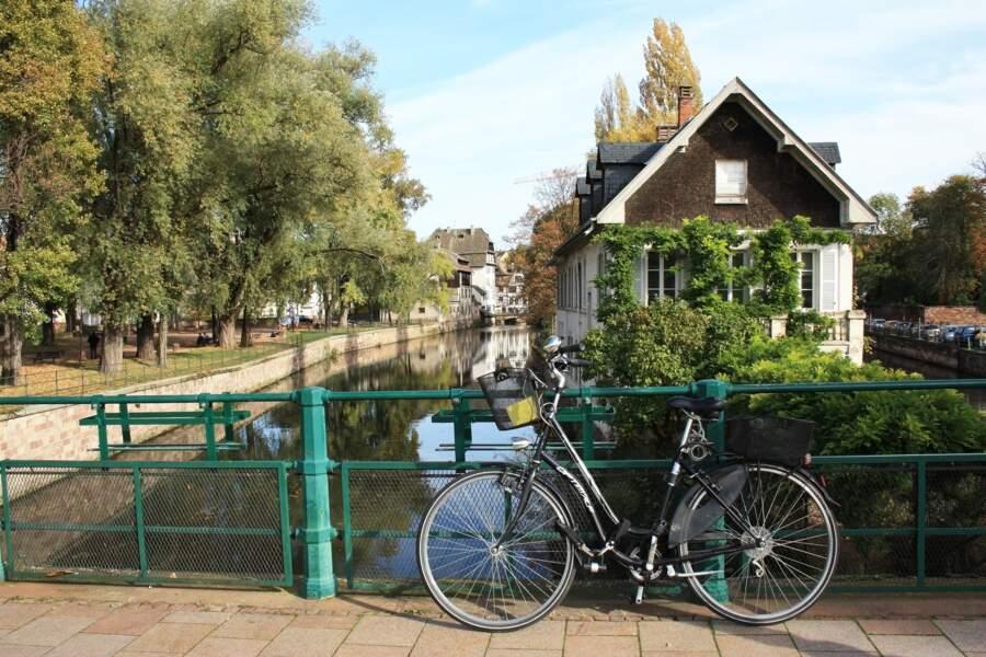 Strasbourg, l'heureuse élue sacrée capitale du vélo