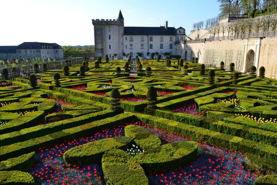 Les jardins du Château de Villandry (Indre-et-Loire)