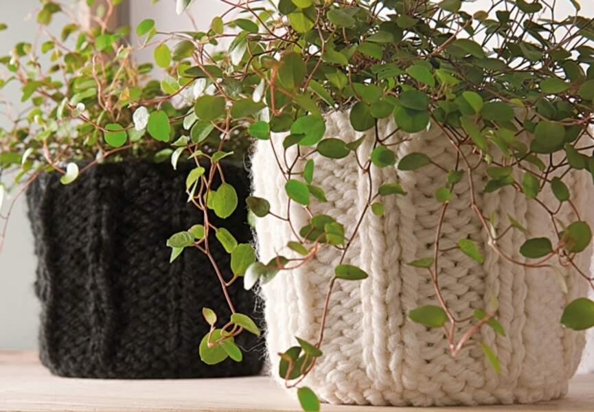 Des cache-pots tricotés