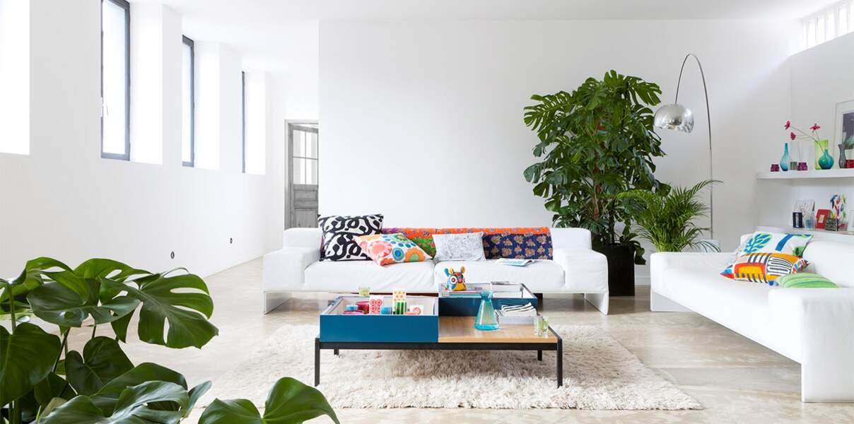 Salon blanc, végétal et graphique