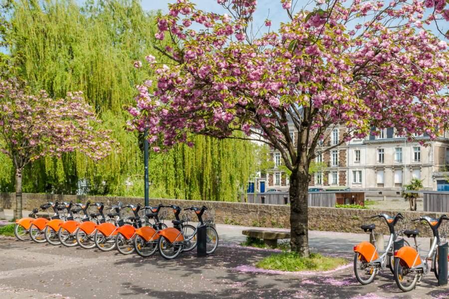 Nantes, deuxième ville française la plus vélo-friendly