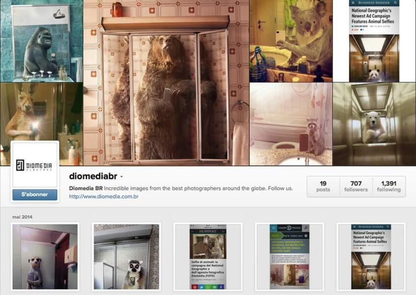 Le compte Instagram où voir tous les selfies