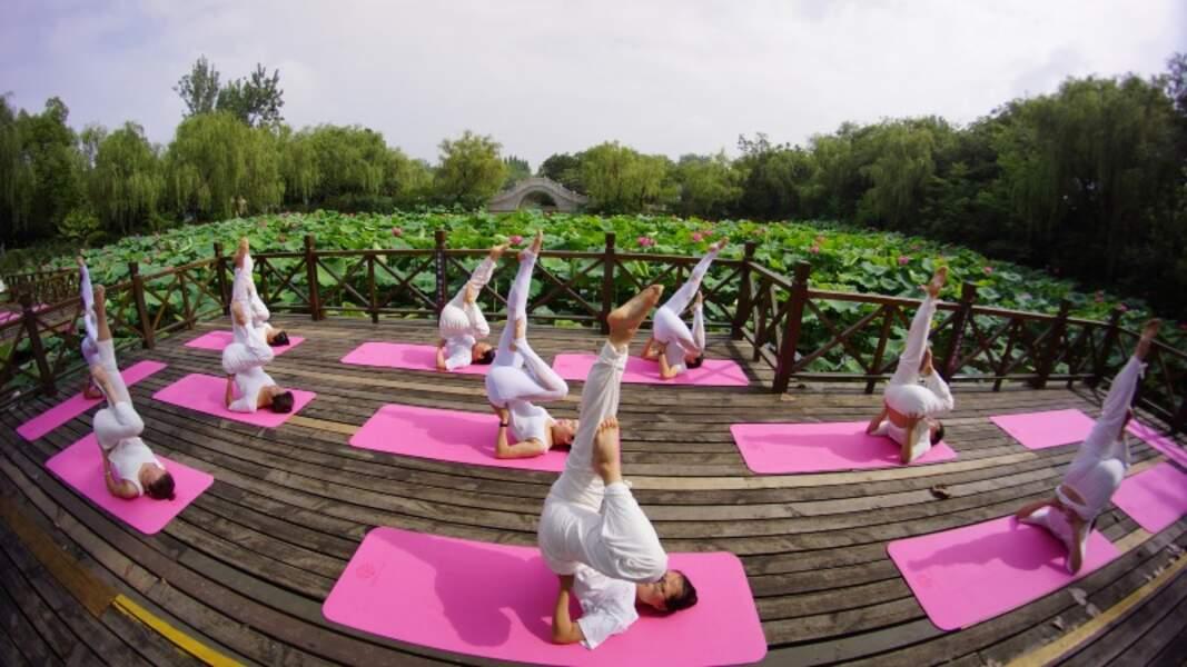 Yoga Day : et si on s'y mettait ?