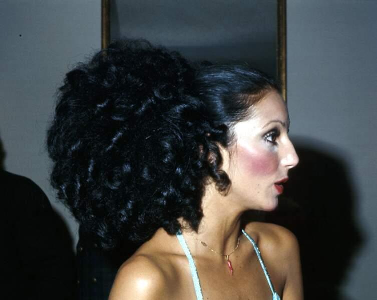 La queue-de-cheval façon afro de Cher