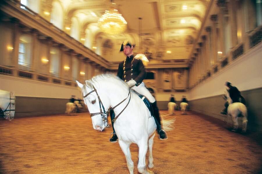 L'École espagnole d'équitation de Vienne