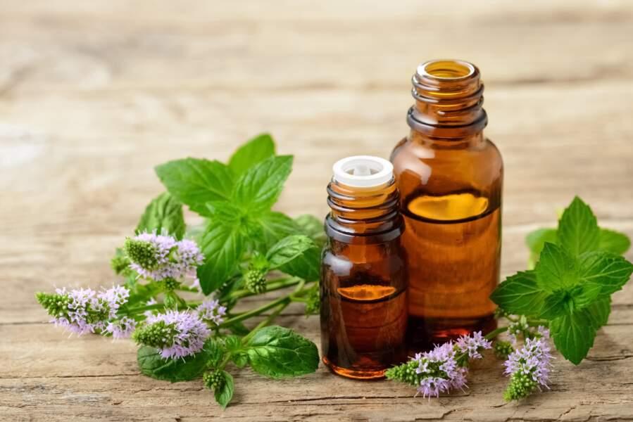 L'huile essentielle de menthe poivrée : pour faciliter la digestion