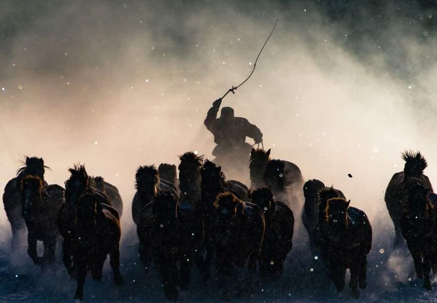 Cavalier mongol en hiver, Mongolie