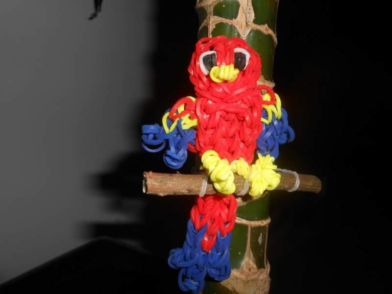 Le perroquet par Sandrine