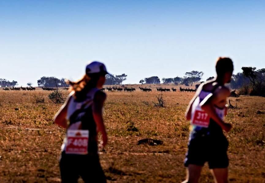 3 – Le Big Five Marathon en Afrique du Sud