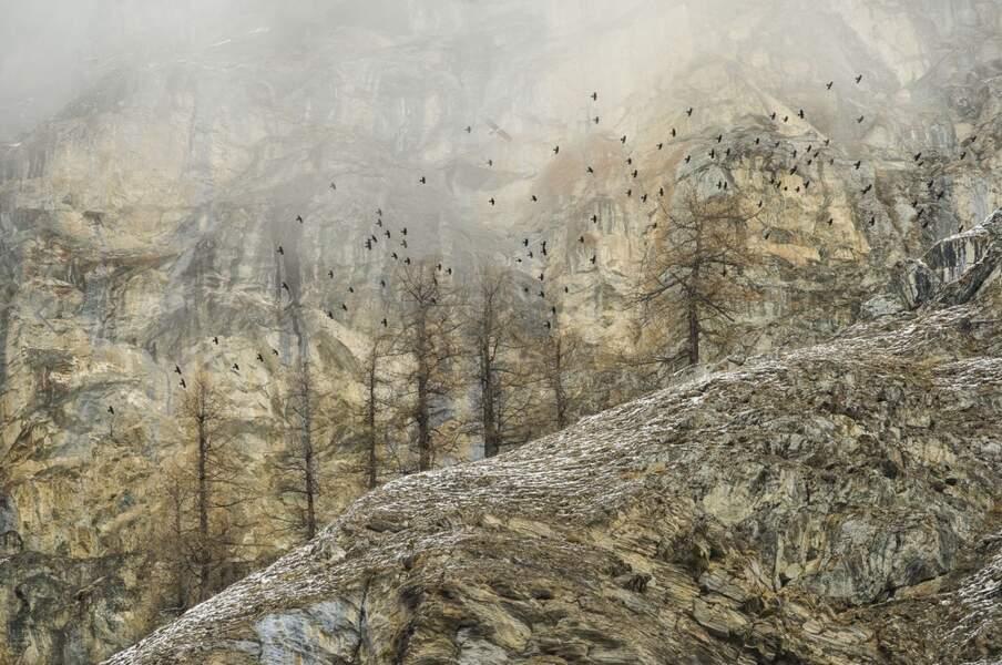 """Premier prix catégorie """"paysages"""", Stefano Unterthiner"""
