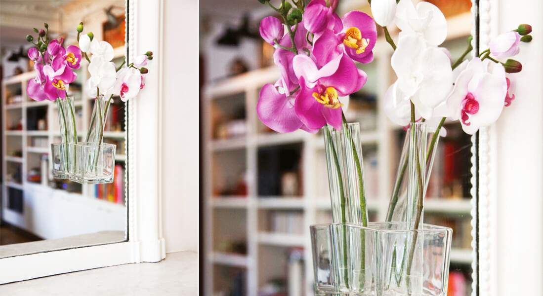 Un intérieur fleuri avec des soliflores express