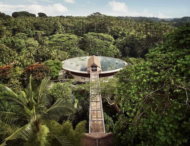 La jungle à votre porte, Bali
