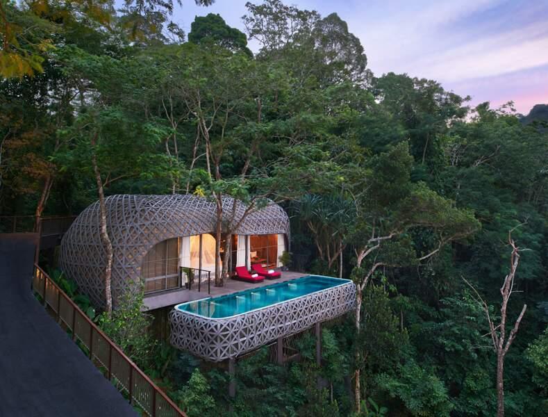 Une cabane dans les arbres, Thaïlande