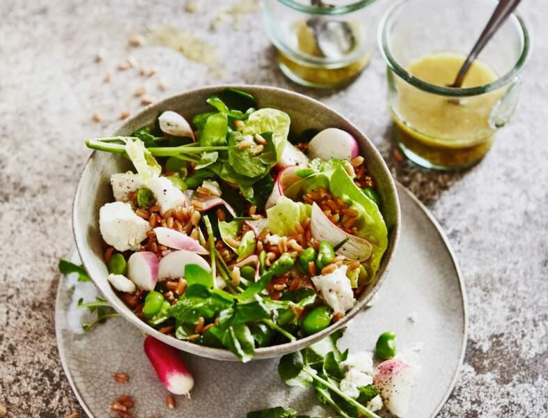Salade express aux légumes de printemps
