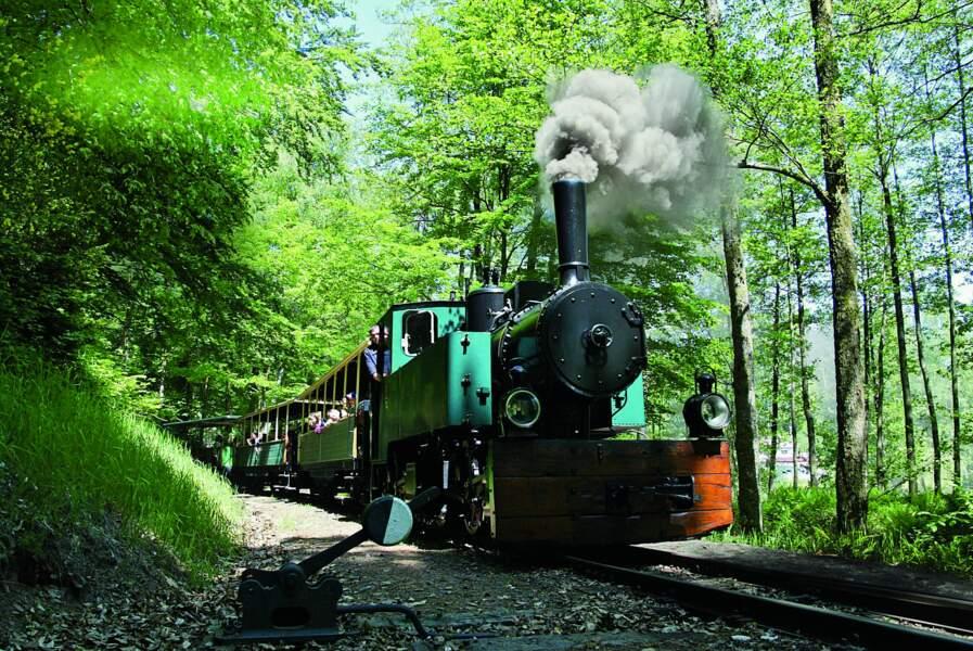 Le train forestier des Vosges