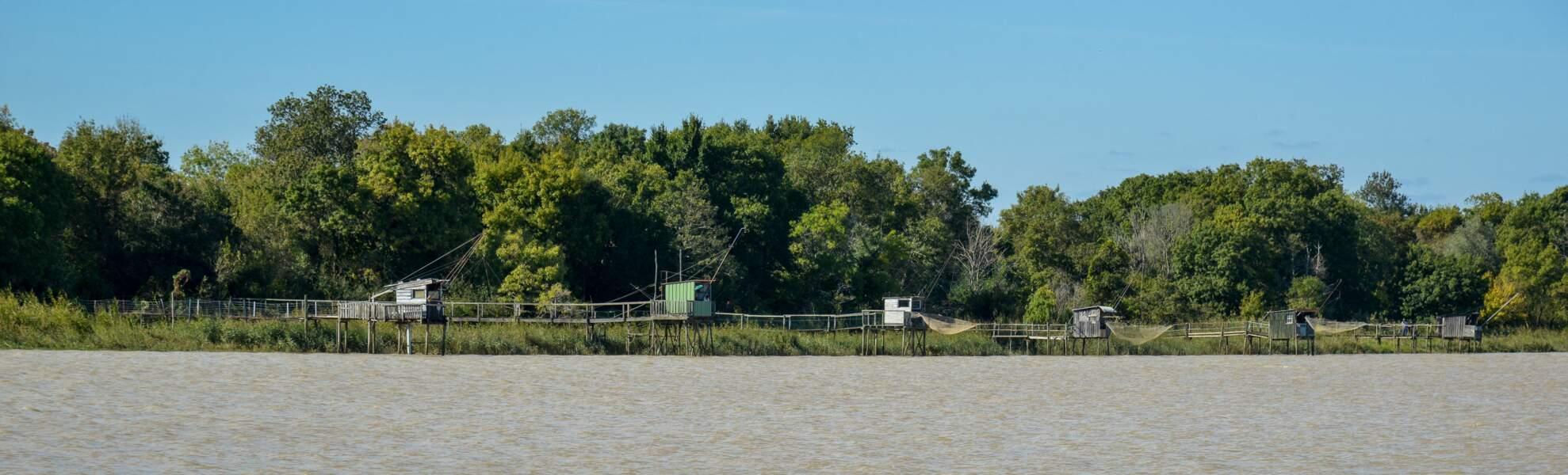 Patiras (Gironde), île de beauté en eaux troubles