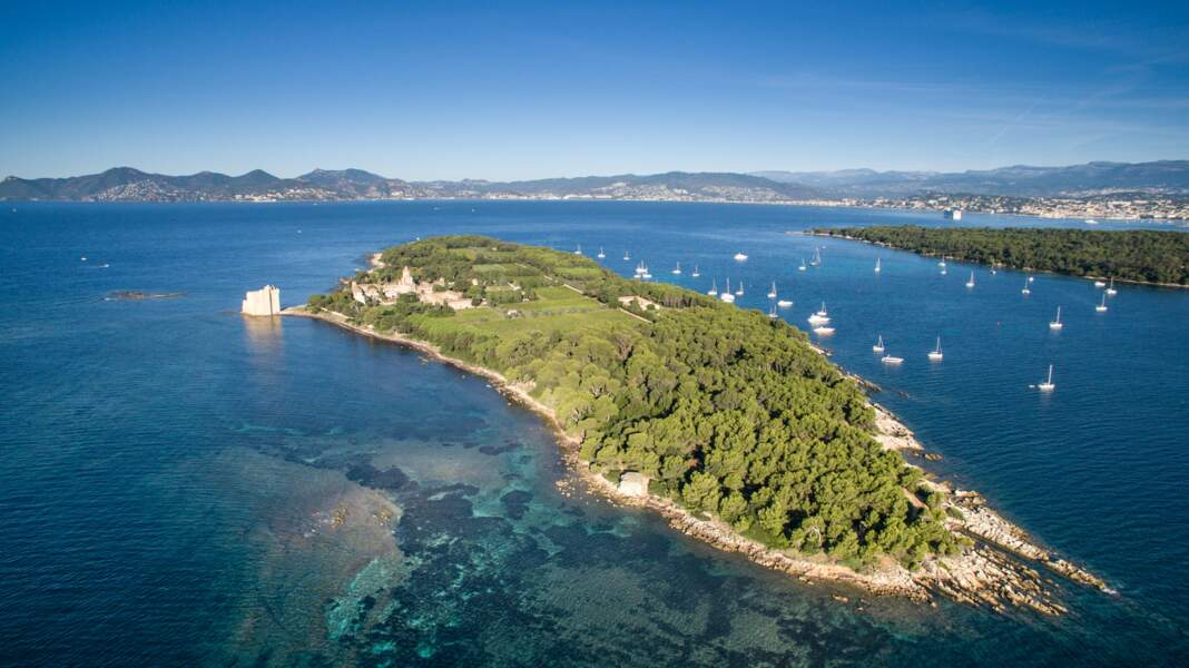 Saint-Honorat (Alpes-maritimes), la mystique