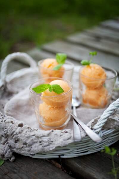 Sorbet melon, orange et basilic au Thermomix®