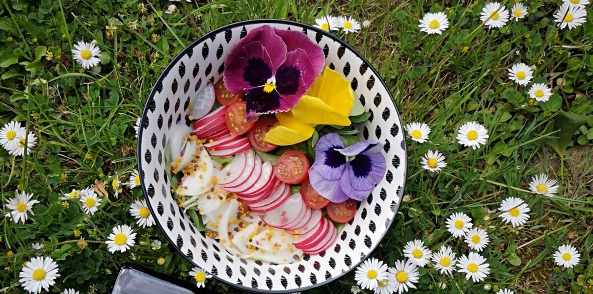 Salade d'été au pollen et aux fleurs