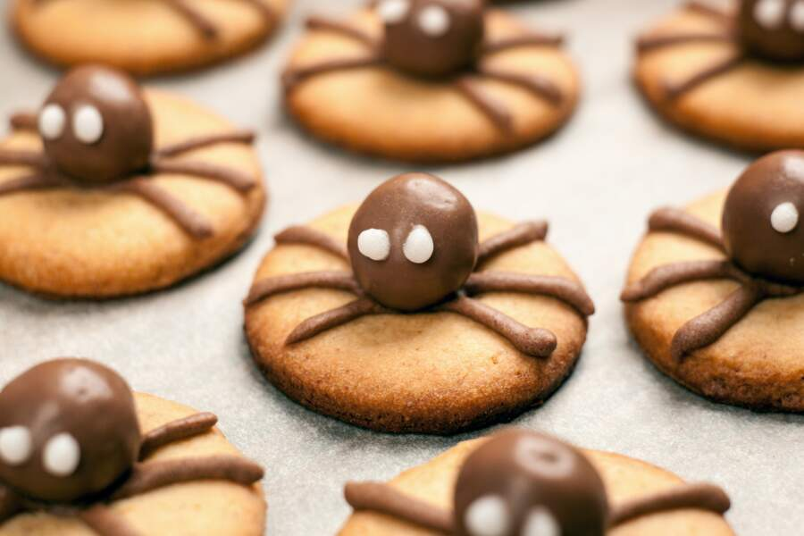 Araignée d'Halloween : nos idées velues