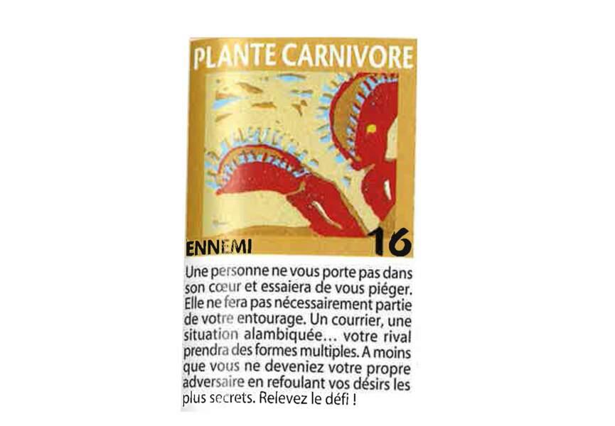 Jeu de l'oie divinatoire : plante carnivore