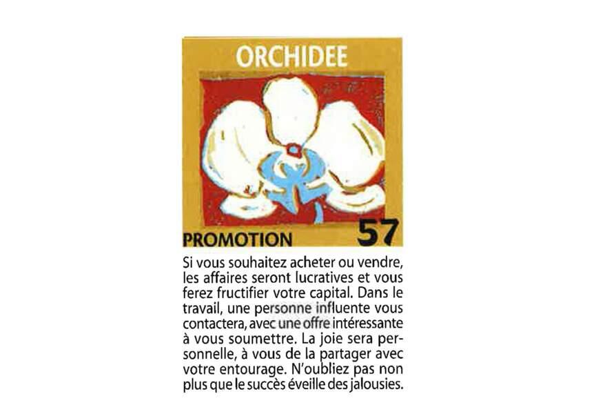 Jeu de l'oie divinatoire : orchidée
