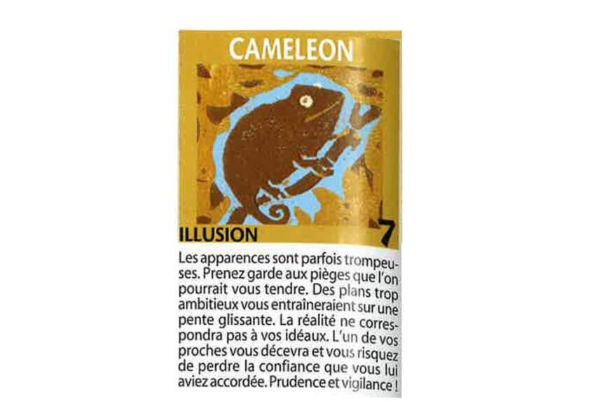 Jeu de l'oie divinatoire : caméléon
