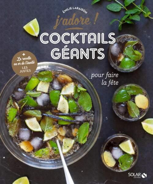 """Livre """"Cocktails géants"""" d'Emilie Laraison aux Éditions Solar"""