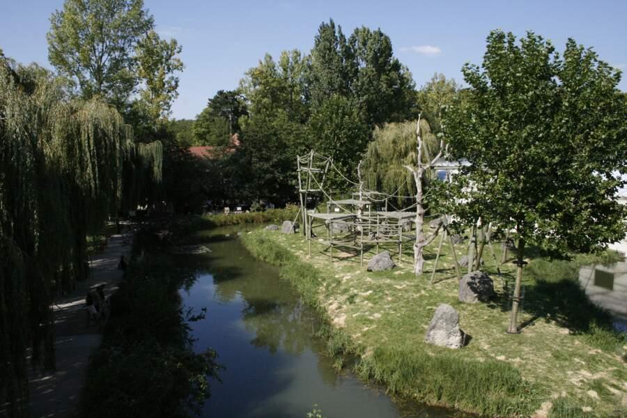 L'île des gorilles.