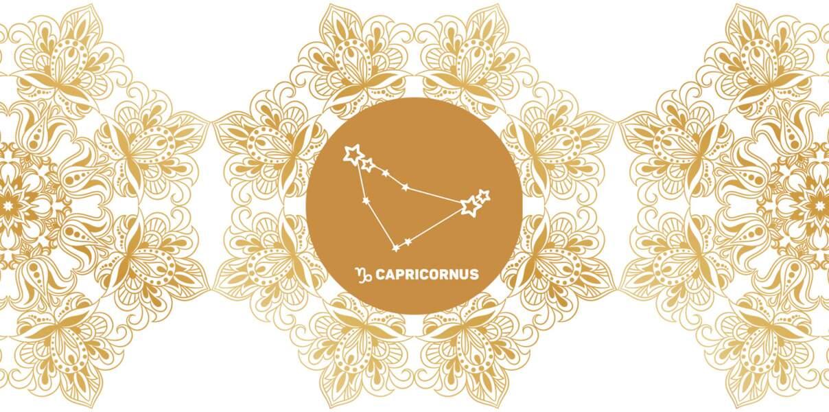Horoscope védique : portrait du signe Makara (Capricorne) en astrologie indienne