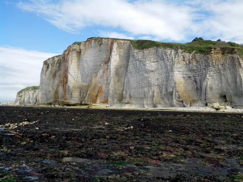 Les falaises de Vatrelot-sur-Mer