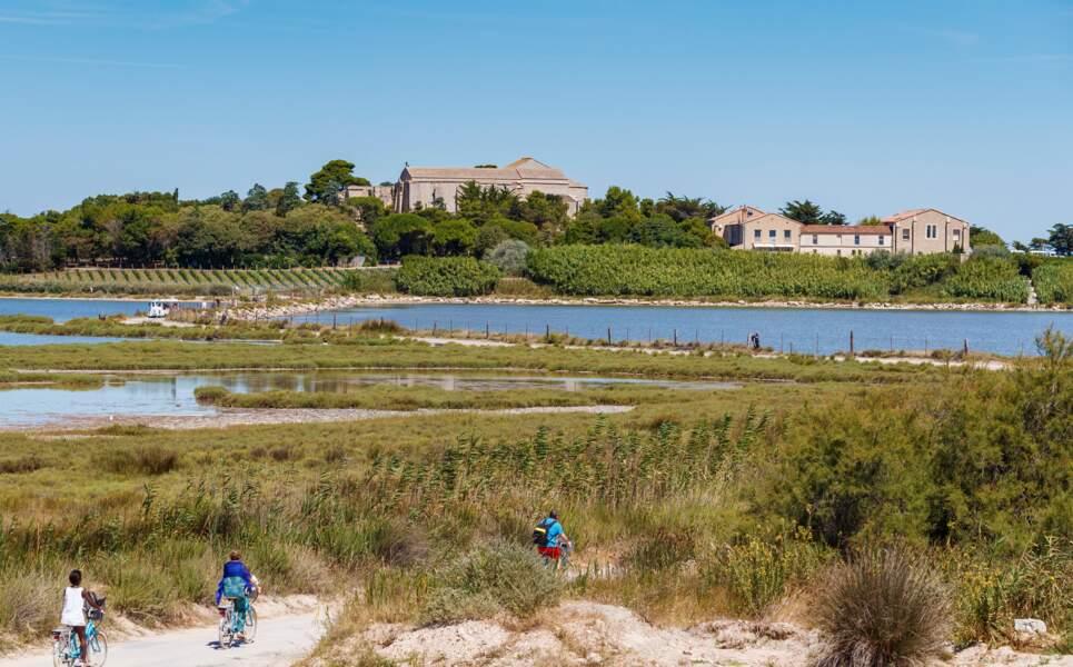 Entre Montpellier et la mer, une balade en vélo s'impose