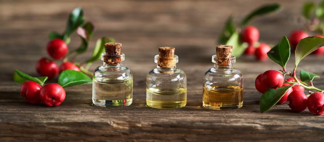 L'huile essentielle de gaulthérie odorante