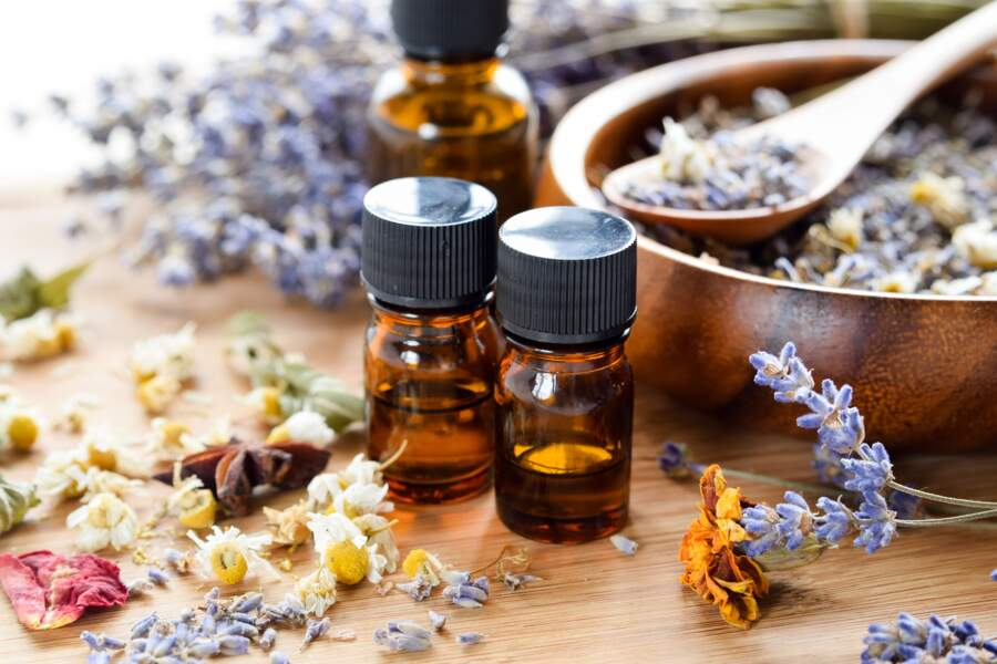 L'huile essentielle de Lavande fine et de Camomille romaine
