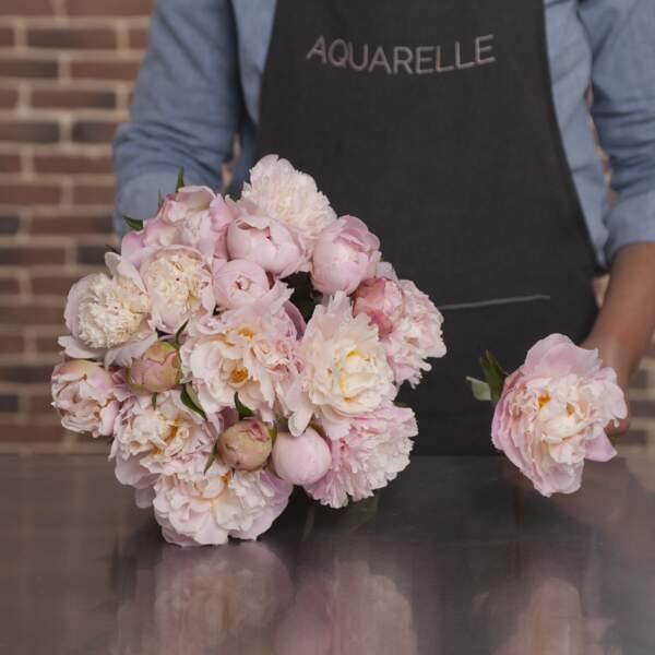 Bouquet de pivoine : Aquarelle