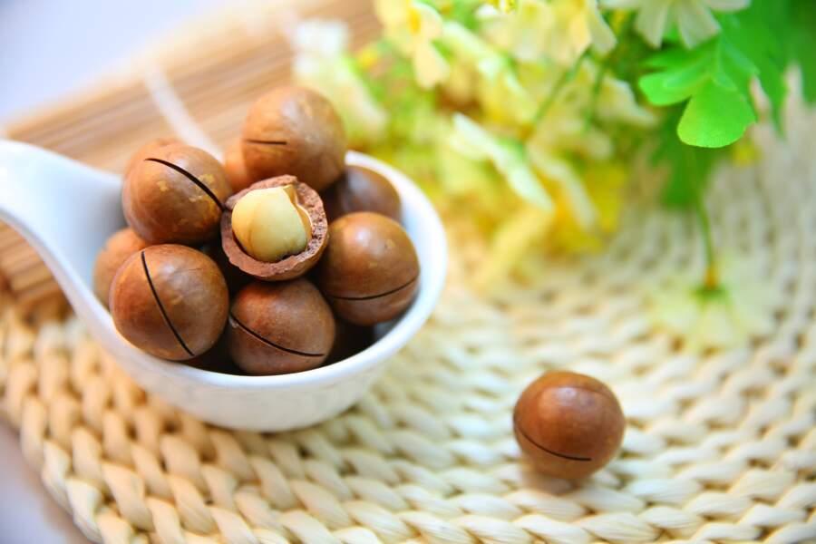 Les noix, les noix de Pécan, du Brésil, de macadamia et les noisettes.