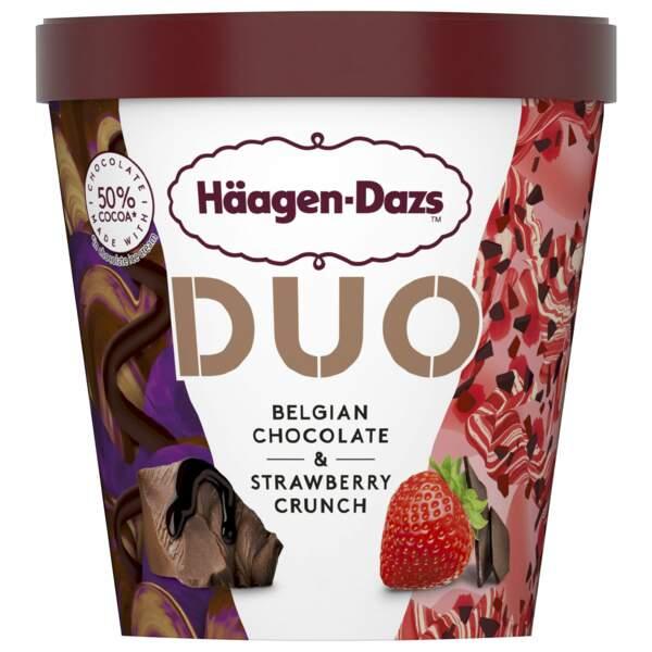 Duo fraise chocolat - Häagen-Dazs
