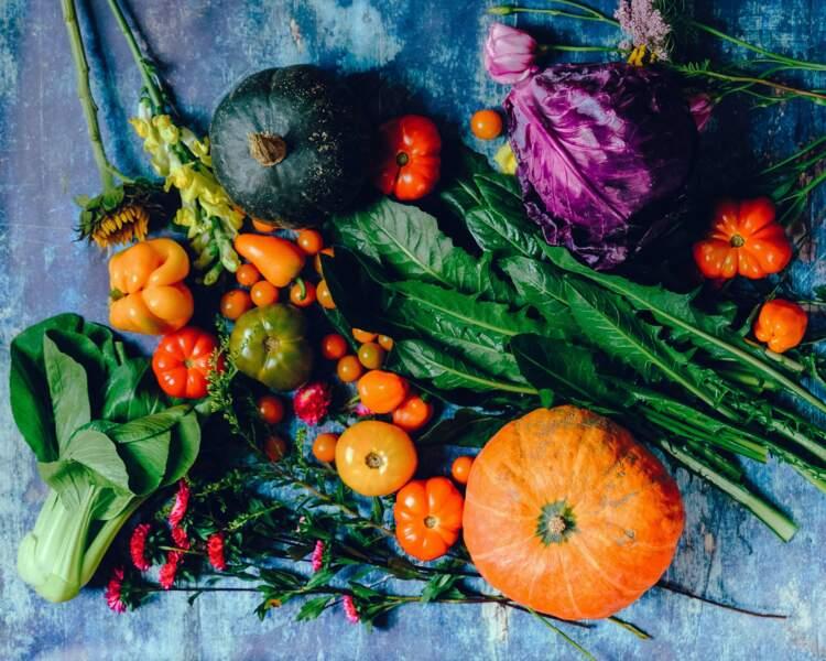 Les 15 légumes renfermant des protéines